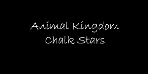 Animal Kingdom - Chalk Stars