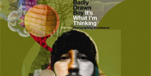 Badly Drawn Boy It's What I'm Thinking (Part One - Photographing Snowflakes) Album