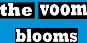The Voom Blooms - Politics and Cigarrettes