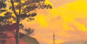 Bonobo Black Sands Album
