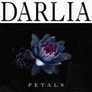 Darlia Petals Album