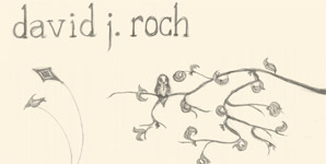 David J. Roch - Skin and Bones