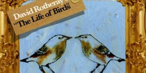 David Rotheray - The Life of Birds Album Review