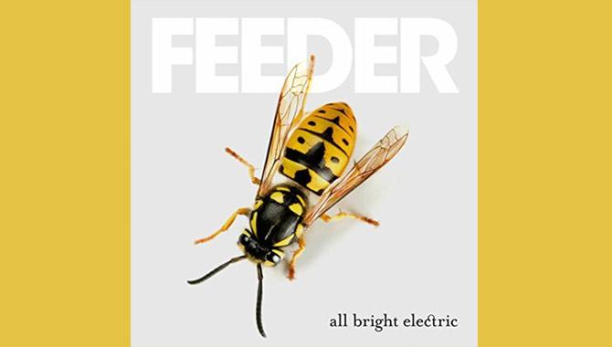 Feeder - All Bright Electric Album Review