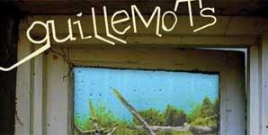 Guillemots - Through The Windowpane Album Review