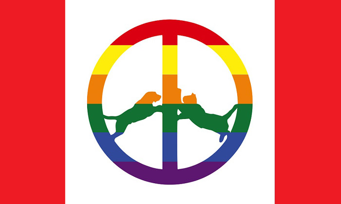 Hype Williams Rainbow Edition Album
