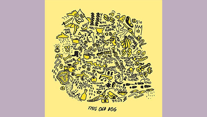 Mac DeMarco - This Old Dog Album Review
