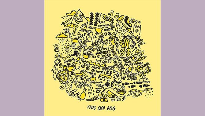 Mac DeMarco This Old Dog Album