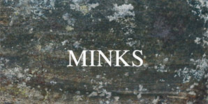 Minks By The Hedge Album