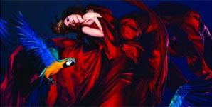 Paloma Faith - Fall To Grace Album Review