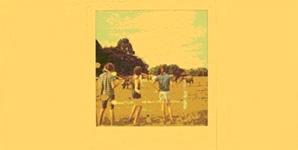Pond Beard, Wives, Denim Album