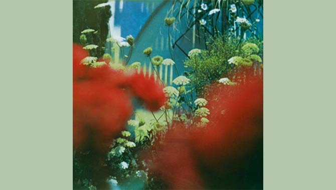 Pulled Apart By Horses - The Haze Album Review