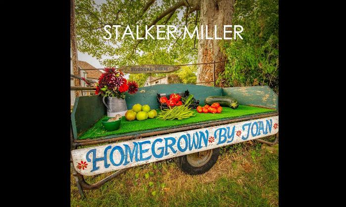 Stalker Miller Homegrown By Joan Album