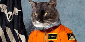 Klaxons - Surfing the Void Album Review