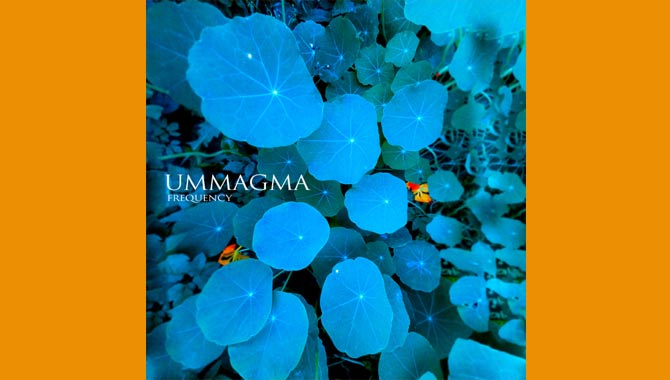 Ummagma - Frequency Album Review