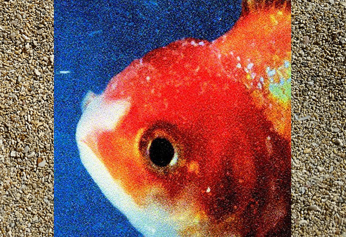 Vince Staples Big Fish Theory Album