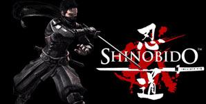 Shinobido Way of the Ninja, Review PS2