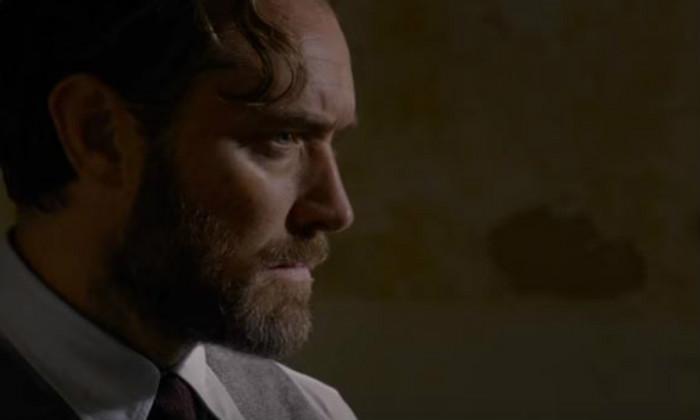 Albus Dumbledore (Jude Law)