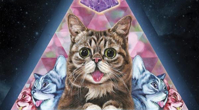 Miaow-sical! Famous Feline Lil Bub Has A New Album Entitled 'Science & Magic'