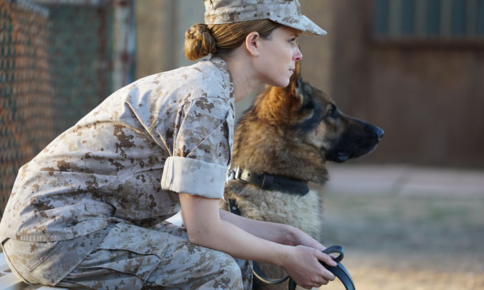 Kate Mara and Varco in the movie Megan Leavey