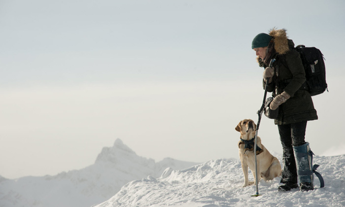 Alex and Ben are joined by the pilot's dog on their journey