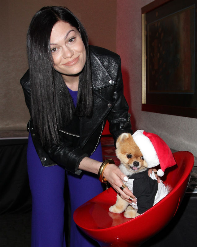 Jessie J and Jiff the Pomeranian at Y100's Jingle Ball 2014