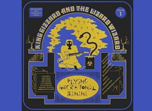 King Gizzard and the Lizard Wizard - Flying Microtonal Banana Album Review