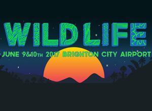 Wild Life Festival 2017 Review