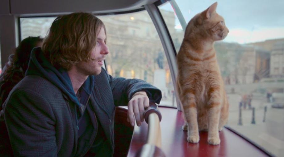 A Street Cat Named Bob - Trailer