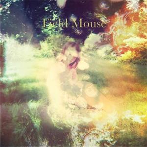 Field Mouse Announces Us 2013 Tour