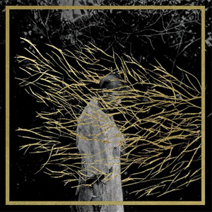 Forest Swords Announces Debut Album 'Engravings' Released 26th August 2013