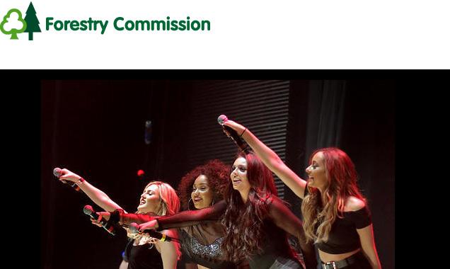 Little Mix Announce June 2014 Concert As Part Of Forest Live