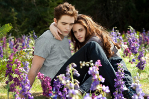 The Twilight Saga: Breaking Dawn Part 2 Movie Review