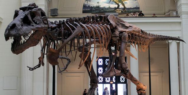 Dinosaur 13 Movie Still