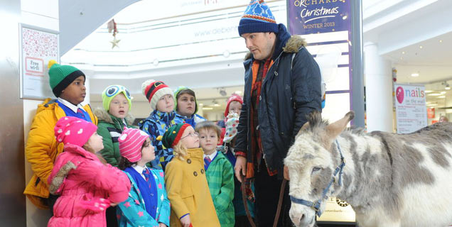 Nativity 3: Dude Where's My Donkey?! Movie Review