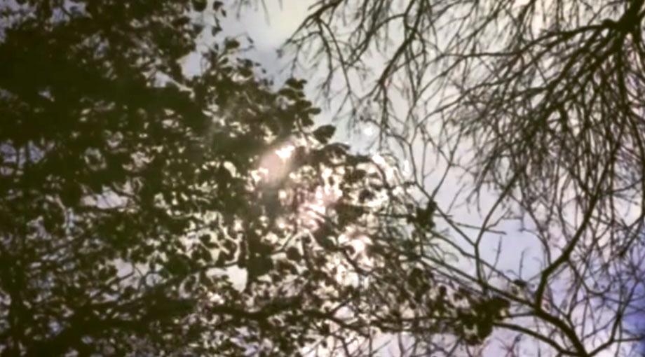 David Gray - Smoke Without Fire Video Video