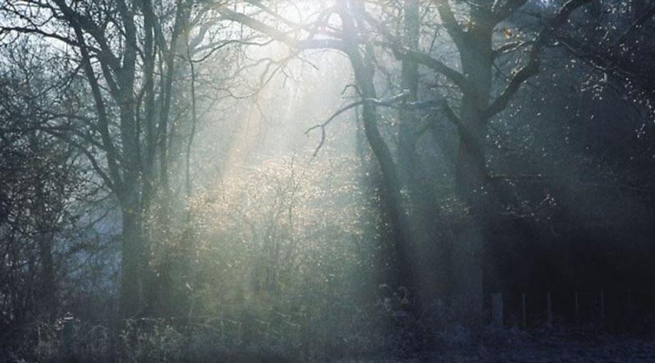 Wolf Alice - Heavenward Audio Video