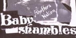 Babyshambles Shotter's Nation Album