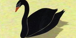Bert Jansch The Black Swan Album