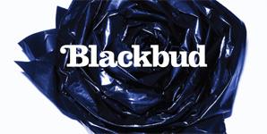 Blackbud Blackbud Album