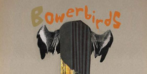 Bowerbirds Hymns for a Dark Horse Album