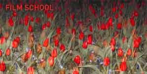 Film School 11:11 Single