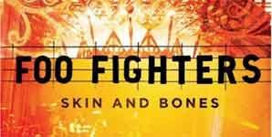 Foo Fighters Skin And Bones Album