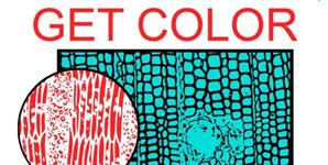 Health Get Colour Album