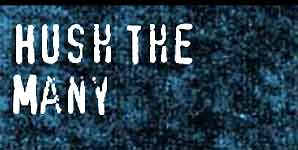 Hush The Many  - Interview