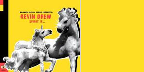 Broken Social Scene Presents Kevin Drew, Backed Out On The