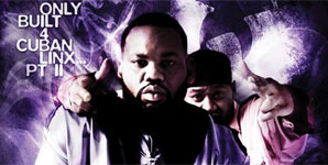 Raekwon Only Built 4 Cuban Linx, Pt II Album