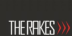 The Rakes The World Was A Mess But His Hair Was Perfect Single