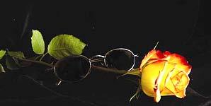 Warren Zevon Romantic Genius Album