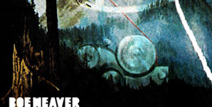 Boe Weaver Boe Weaver Album